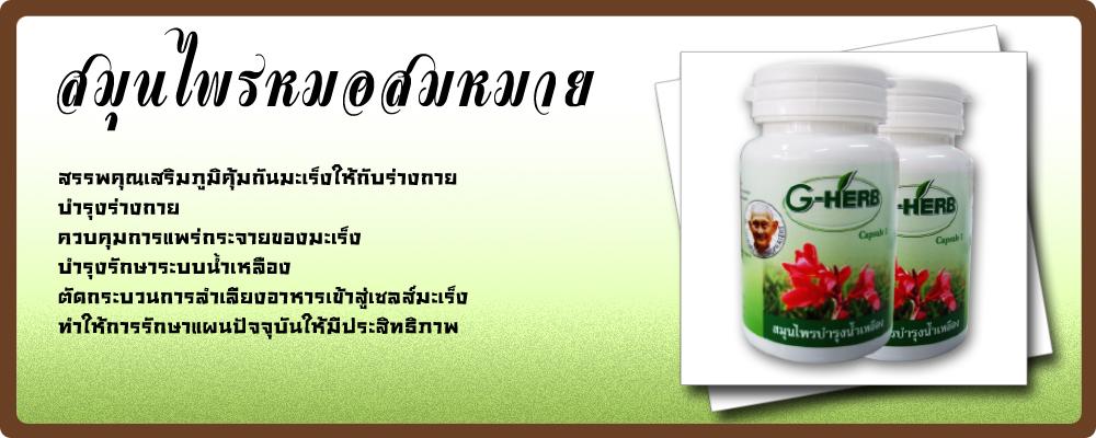 สมุนไพรบำรุงน้ำเหลือ G-Herb Capsule 1