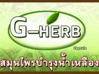 วิธีรับประทานสมุนไพร G-HERB