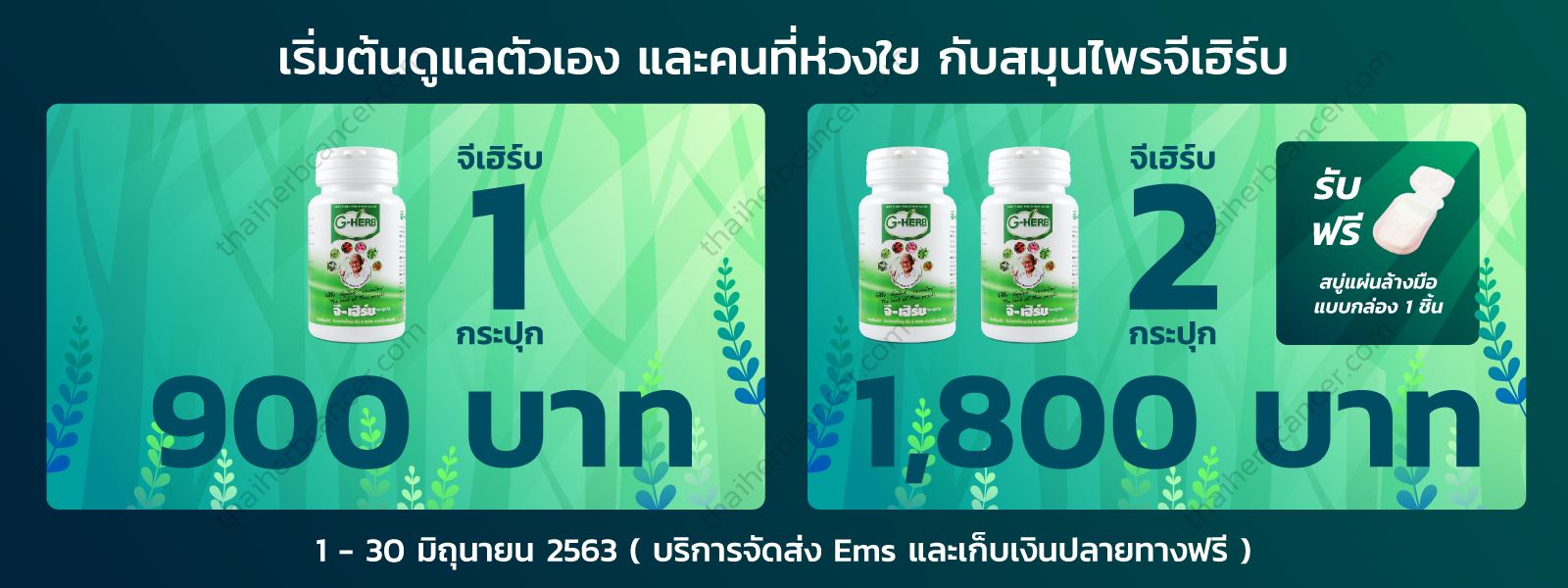 thaiherbcancer-Promotion-JUN-2020-1